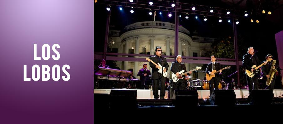 Los Lobos at The Lobero